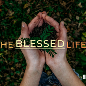 The Blessed Life Part 5